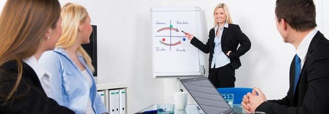 modele de business plan consultant en management